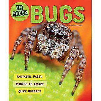 In Focus: Bugs (In Focus)