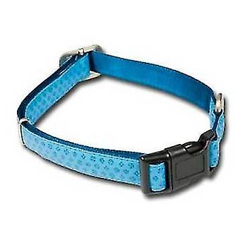 כלבים עם צווארון כלבי מקעור כחול M (לכלבים, קולרים, הפניות ורתמות, קולרים)