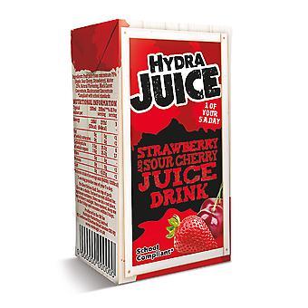 Hydra Strawberry & Cherry Juice Drink Cartons