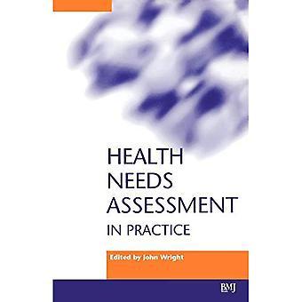Health Needs Assessment in Practice