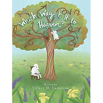Which Way Is It to Heaven? by Tiffany M Campione - 9781643005010 Book