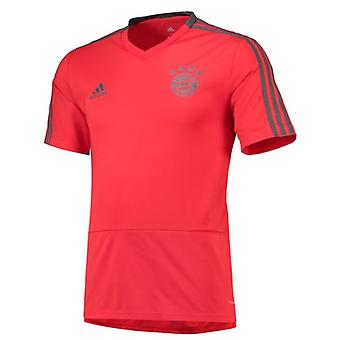 2018-2019 Bayern München Adidas uddannelse trøje (rød) - børn