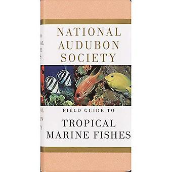 Guía de campo sociedad nacional Audubon peces marinos tropicales del Caribe, el Golfo de México, Florida, las Bahamas y las Bermudas