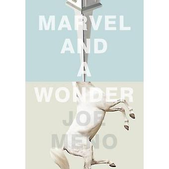 Marvel and a Wonder by Joe Meno - 9781617753930 Book