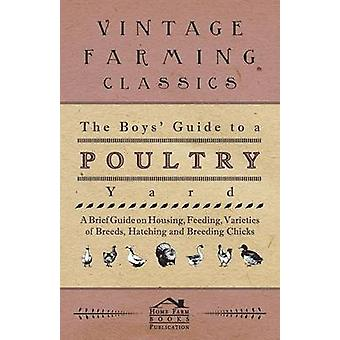 The Boys Guide to a Poultry Yard  A Brief Guide on Housing Feeding Varieties of Breeds Hatching and Breeding Chicks by Anon