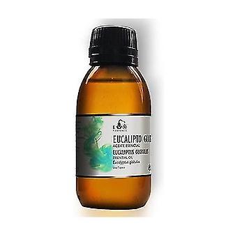 Eucalyptus Globulus Essential Oil 100 ml of essential oil
