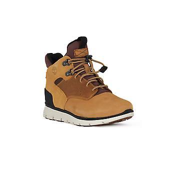 Killington Timberland chukka sneakers mode