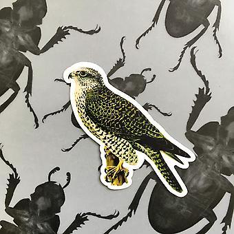 Vintage Falcon Vinyl Aufkleber