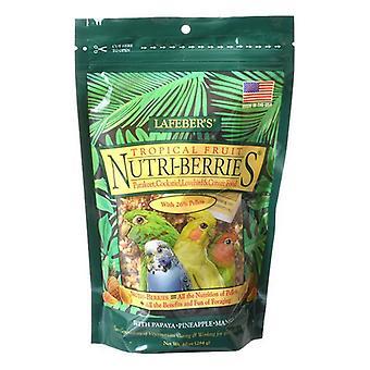 Lafeber Tropical Fruit Nutri-Berries Parakeet, Cockatiel & Conure Food - 10 oz