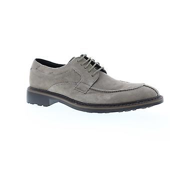Robert Wayne  Mens Gray Suede Casual Lace Up Oxfords Shoes