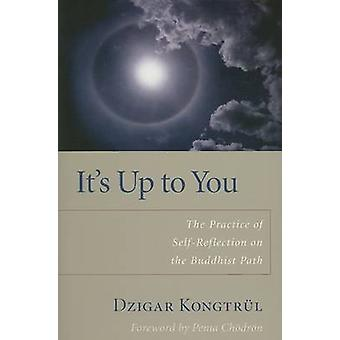 It's Up to You - The Practice of Selfreflection on the Buddhist Path (