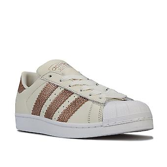 Womens adidas Originals Superstar Trainers In Off White / Copper Metallic