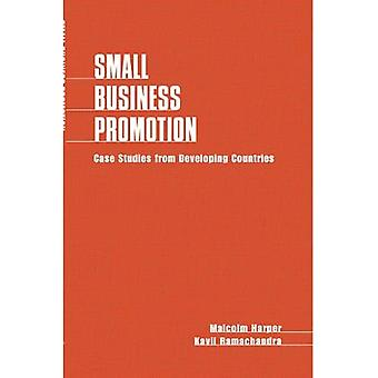Small Business Promotion: Case studies from developing countries