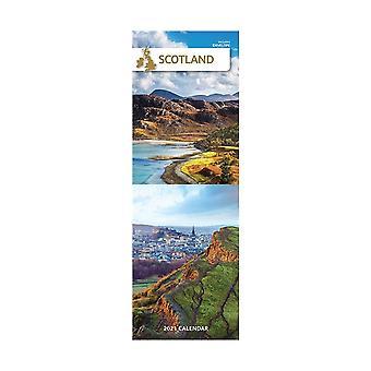 Otter House Scotland 2021 Slim Calendar