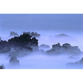 Misty mist laag Over Lava rotsen Oceaan kustlijn PosterPrint