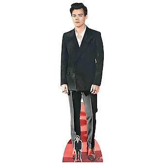 Harry Styles Red Shoes Lifesize Cardboard Cutout / Standee