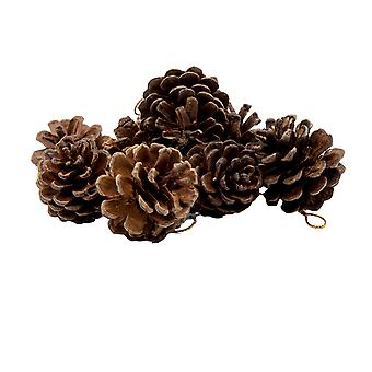 TRIXES Pack of 9 Decorative Hanging Pinecone Christmas Tree Decorations