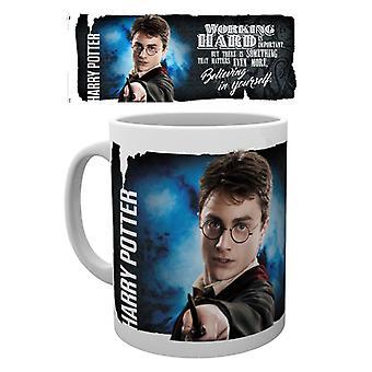 Harry Potter dynaaminen Harry Muki