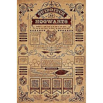 Harry Potter Huispaus Juliste