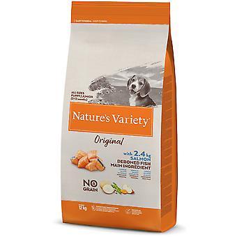 Nature's Variety Original Grain Free Junior Salmón (Dogs , Dog Food , Dry Food)
