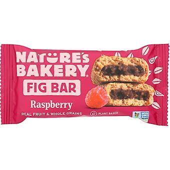 Natures Bakery Bar Fig Ww Raspberry, Case of 12 X 2 Oz