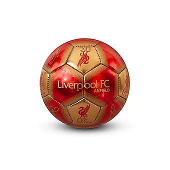 Liverpool FC Signature Mini jalka pallo