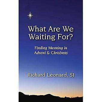 Vad är det vi väntar på?: att finna mening i Advent & jul