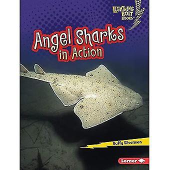 Angel Sharks in Action (Lightning Bolt Books Shark� World)