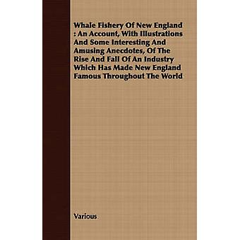 Whale Fishery Of New England  An Account With Illustrations And Some Interesting And Amusing Anecdotes Of The Rise And Fall Of An Industry Which Has Made New England Famous Throughout The World by Various