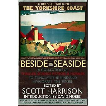 Beside the Seaside by Alison Littlewood - 9781909679115 Book