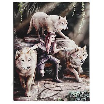Anne Stokes Power of Three Canvas Plaque