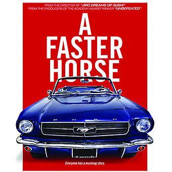 Raskere hest [DVD] USA importere