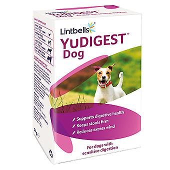 Lintbells Yudigest Chewable Digestion Tablets