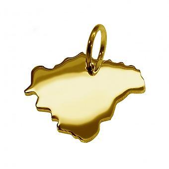 Släpvagn karta hängsmycken i guld gul-guld i form av schweiziska franc