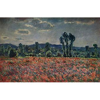 Poppy Field, Claude Monet, 60x40cm