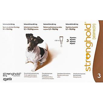 Stronghold Brown Dogs 5-10kg (11-22lbs) - 3 Pack