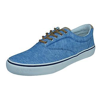 Sperry Striper LL Mens Trainers / schoenen - blauw
