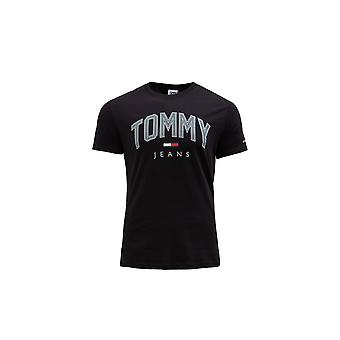 Tommy Hilfiger DM0DM10226BDS universal all year men t-shirt