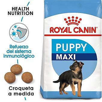 Royal Canin Maxi Puppy Pienso para Cachorros de Razas Tamaño Grande