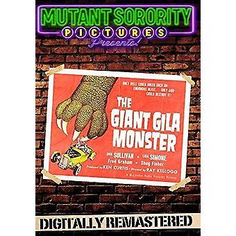 Gigantiske Gila Monster [DVD] USA import