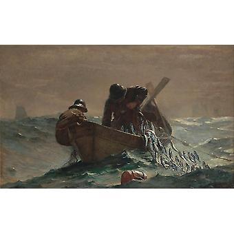 Silli verkko, Winslow Homer, 60x40cm
