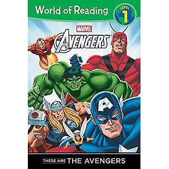 Dies sind die Avengers Level-1-Kartenlesegerät