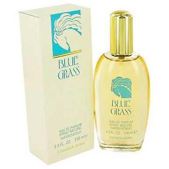 Blue Grass By Elizabeth Arden Eau De Parfum Spray 3.3 Oz (women) V728-417512