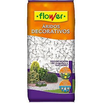 Flower Pure White Marmolina 9/12 4-90084 (Garden , Gardening , Seeds)