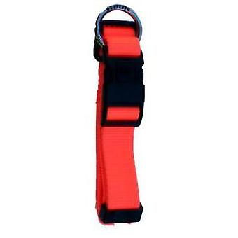 Freedog Nylon Orange Neon Fluor Dog Collar
