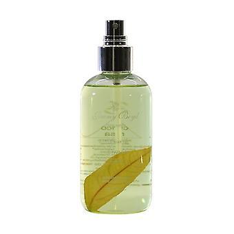Fresh Lemon Water Bio 250 ml