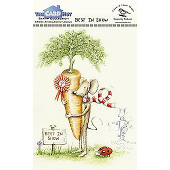 The Card Hut Best In Show Clear Stamps