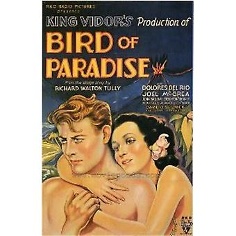 Bird of Paradise ('32) [DVD] USA importeren