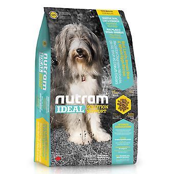 Nutram I20 Sensitive Haut, Mantel und Magen natürlichen Hund