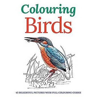 Colouring Birds by Peter Gray - 9781782128717 Book